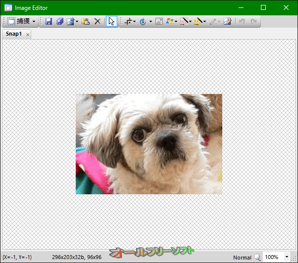 Capture .NET--Image Editor--オールフリーソフト