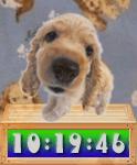 Cute Puppy Clock--オールフリーソフト