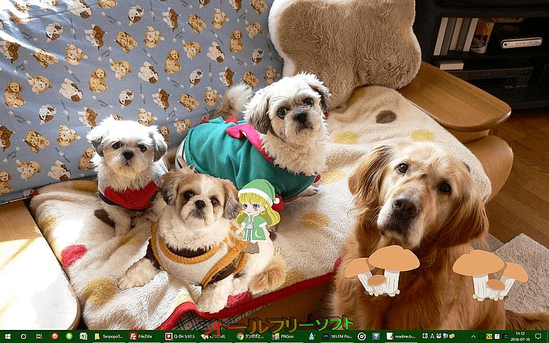 タンポポとキノコ--起動時の画面--オールフリーソフト