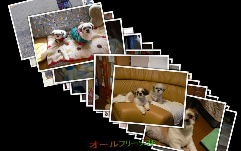 Photo Collage Screensaver--スクリーンセーバー--オールフリーソフト