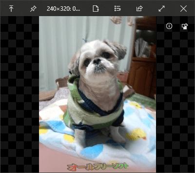 QuickLook--プレビュー/画像--オールフリーソフト