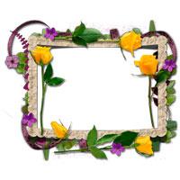 Free Photo Frame--オールフリーソフト