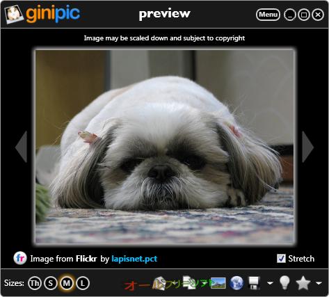 Ginipic--プレビュー--オールフリーソフト