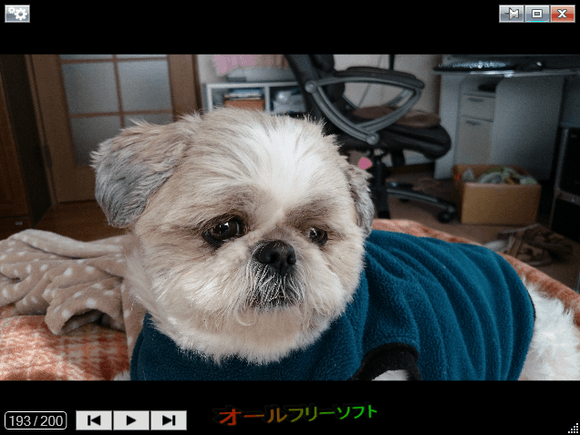 Photo Browser--サムネイルモード--オールフリーソフト