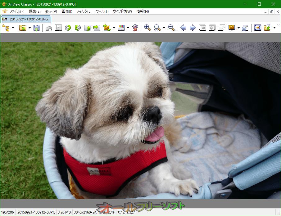 XnView--起動時の画面/プレビュー--オールフリーソフト