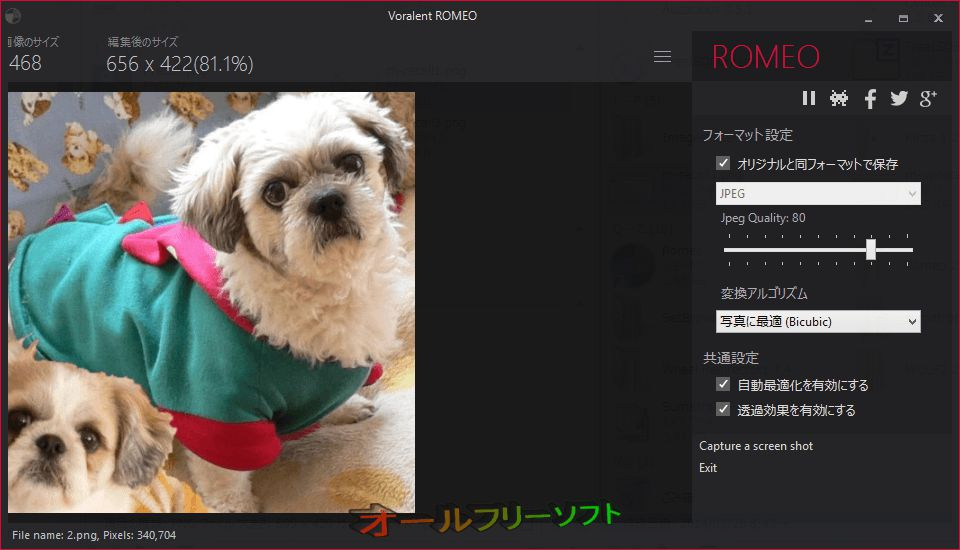 Voralent Romeo--オプション--オールフリーソフト
