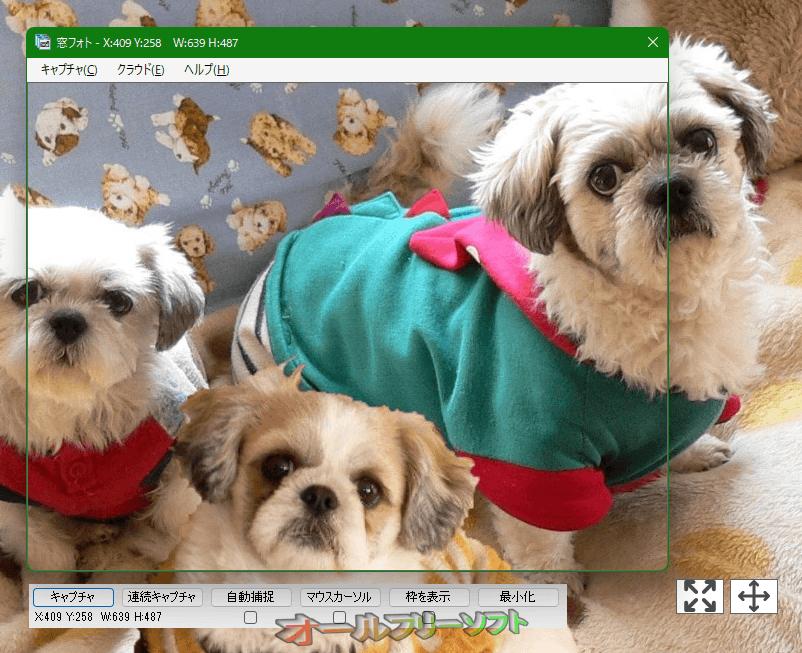 窓フォト--起動時の画面--オールフリーソフト