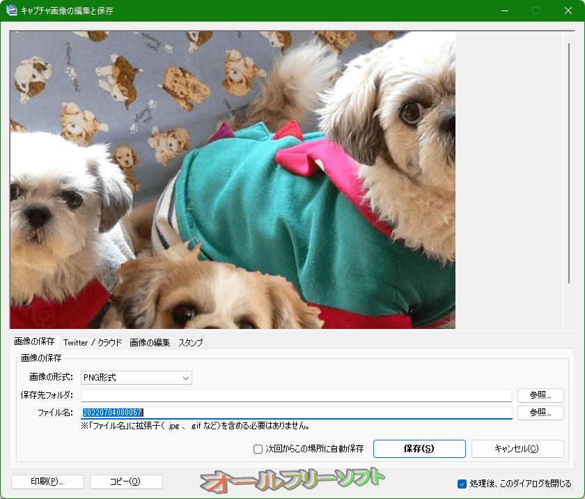 窓フォト--キャプチャ画像の編集と保存/画像の編集--オールフリーソフト