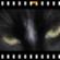 PhotoFilmStrip--オールフリーソフト