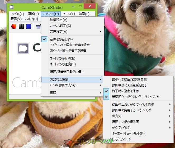 CamStudio--オプション--オールフリーソフト