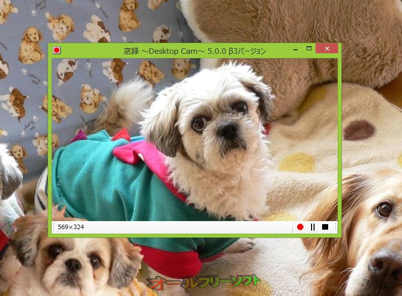 窓録--起動時の画面--オールフリーソフト