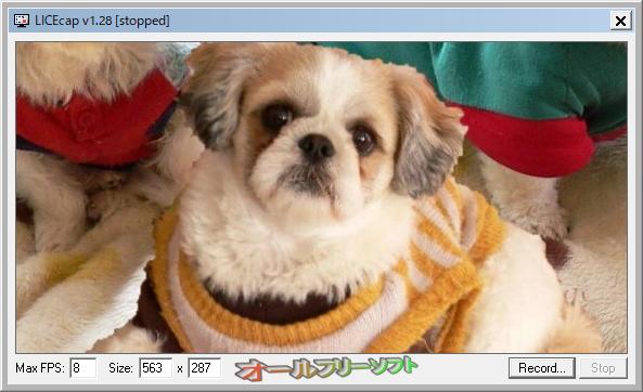 LICEcap--1.28--オールフリーソフト