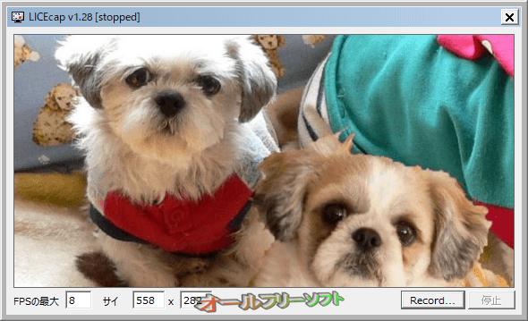 LICEcap--起動時の画面--オールフリーソフト