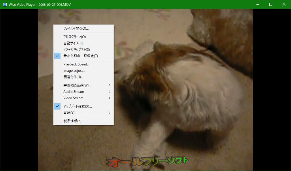 Wise Video Player--右クリックメニュー--オールフリーソフト