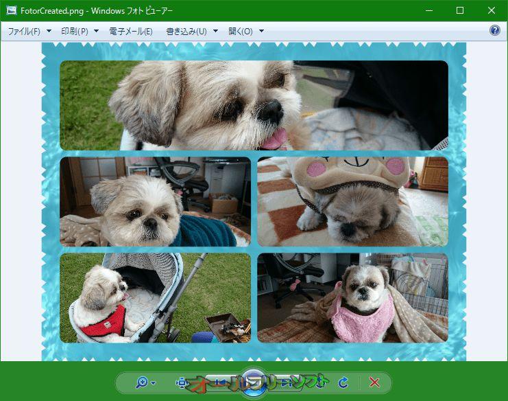 Photo Viewer Background Changer--変更前--オールフリーソフト