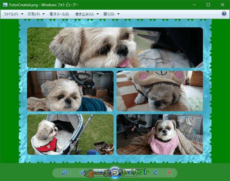 Photo Viewer Background Changer--変更後--オールフリーソフト