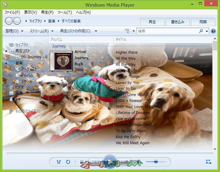 WMP12 Library Background Changer--変更後--オールフリーソフト